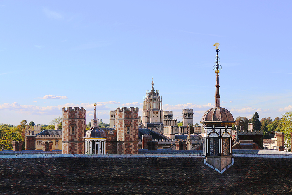 The rooftops of St John's