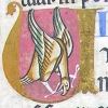 Illuminated initial U incorporating a bird