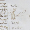 marginal sketch of a rabbit