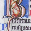 initial B incorporating a cat