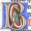 initial B incorporating a bird