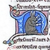 initial N incorporating a rabbit juggling