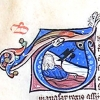initial T incorporating Tobit and a sparrow