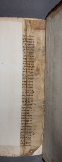 Manuscript fragment used in the binding