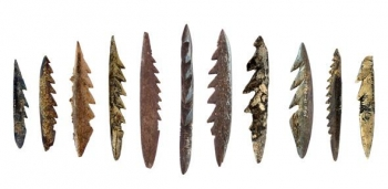 Harpoons discovered by the In Africa project