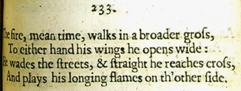 Extract from Dryden's poem 'The fire, mean time, walks in a broader gross...'
