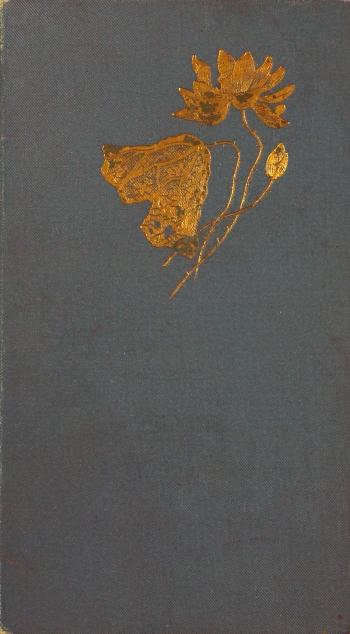 1894 binding