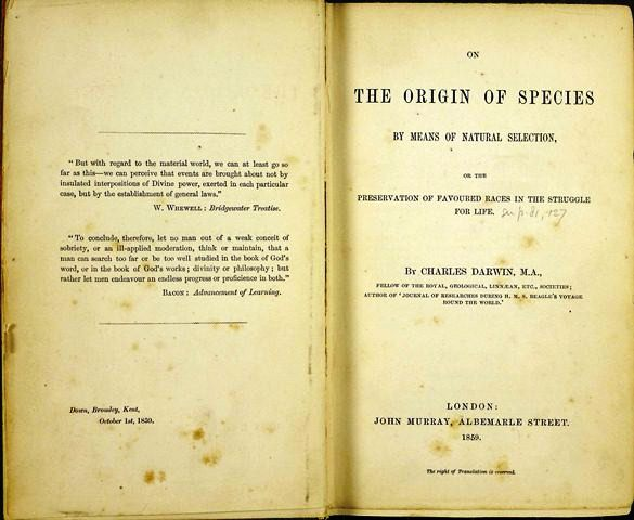 an analysis of the origin of the species by charles darwin A short summary of charles darwin's the origin of species this free synopsis covers all the crucial plot points of the origin of species  literary analysis.