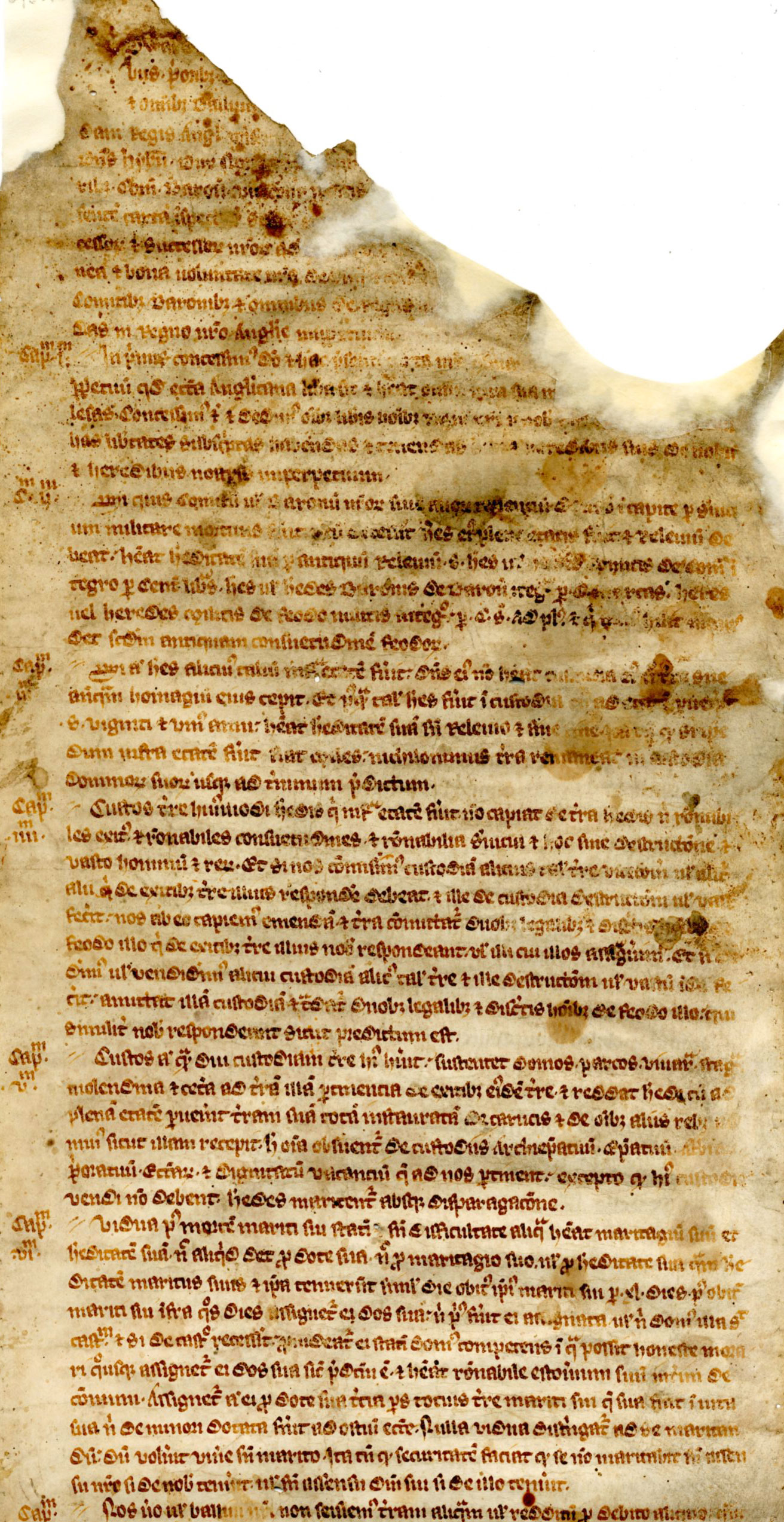 14th century copy of Magna Carta at SJC