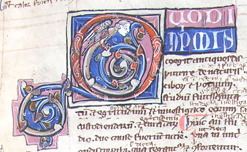initial Q incorporating a winged grotesque