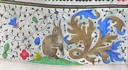 border detail of a rabbit