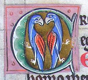 initial C incorporating two birds