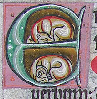 initial E incorporating a dog and a goat sleeping
