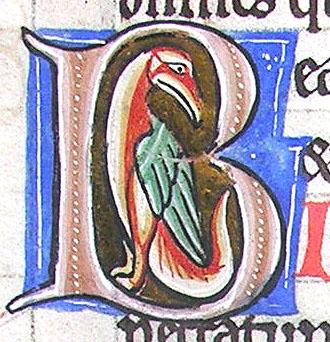 initial B incorporating a bird
