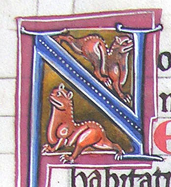 initial N incorporating two cats