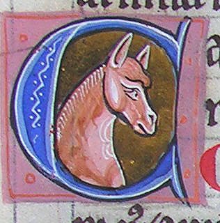 initial C incorporating a horse's head